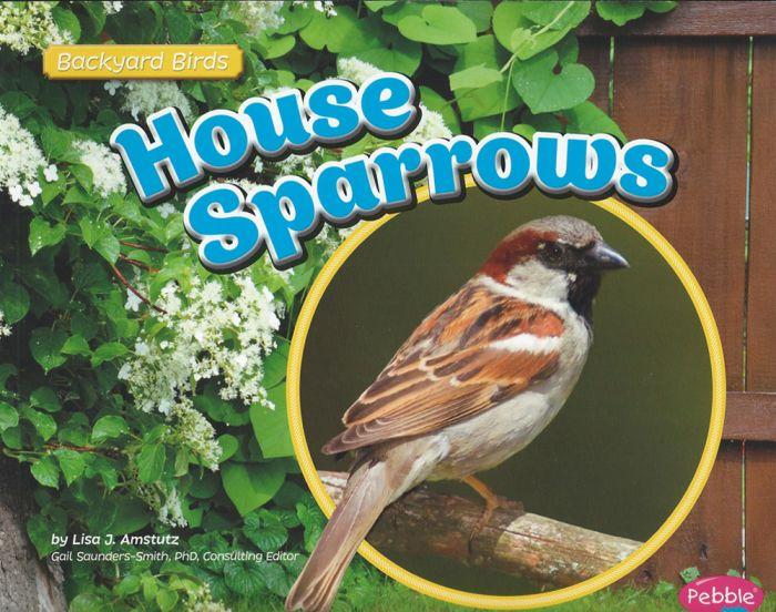 House Sparrows (Backyard Bird Series)