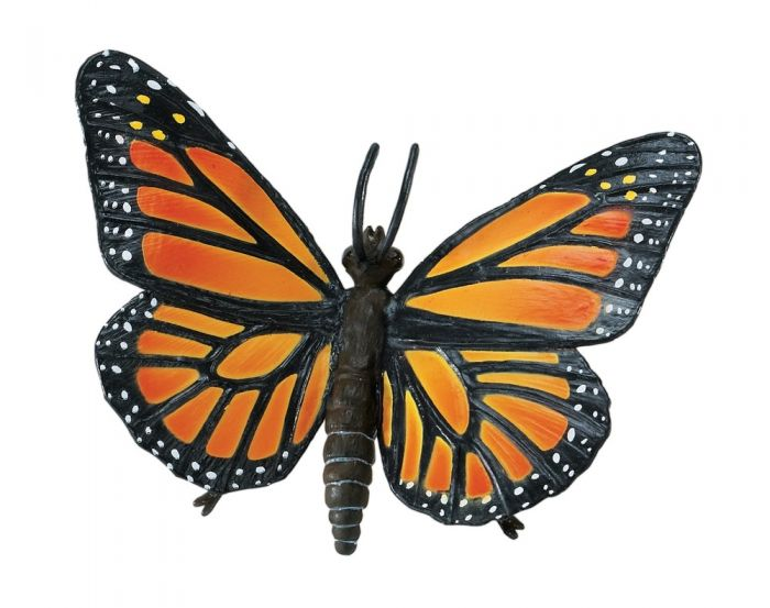Butterfly (Monarch) Model