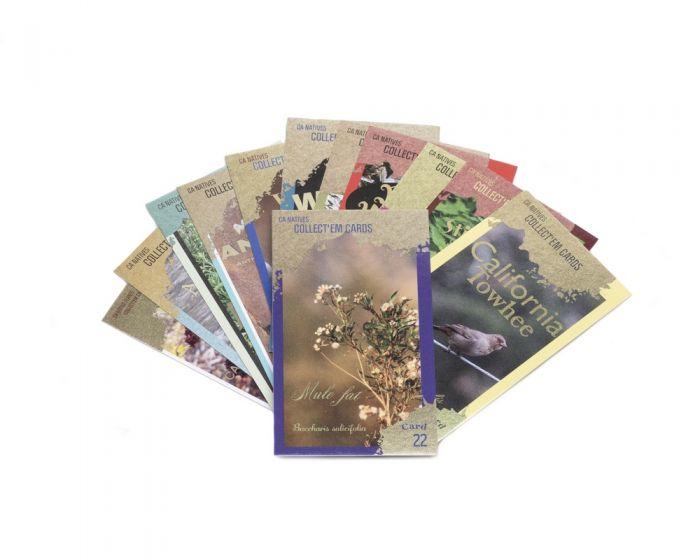 California Natives Trading Card Set (12 Random Cards in Acrylic Box)