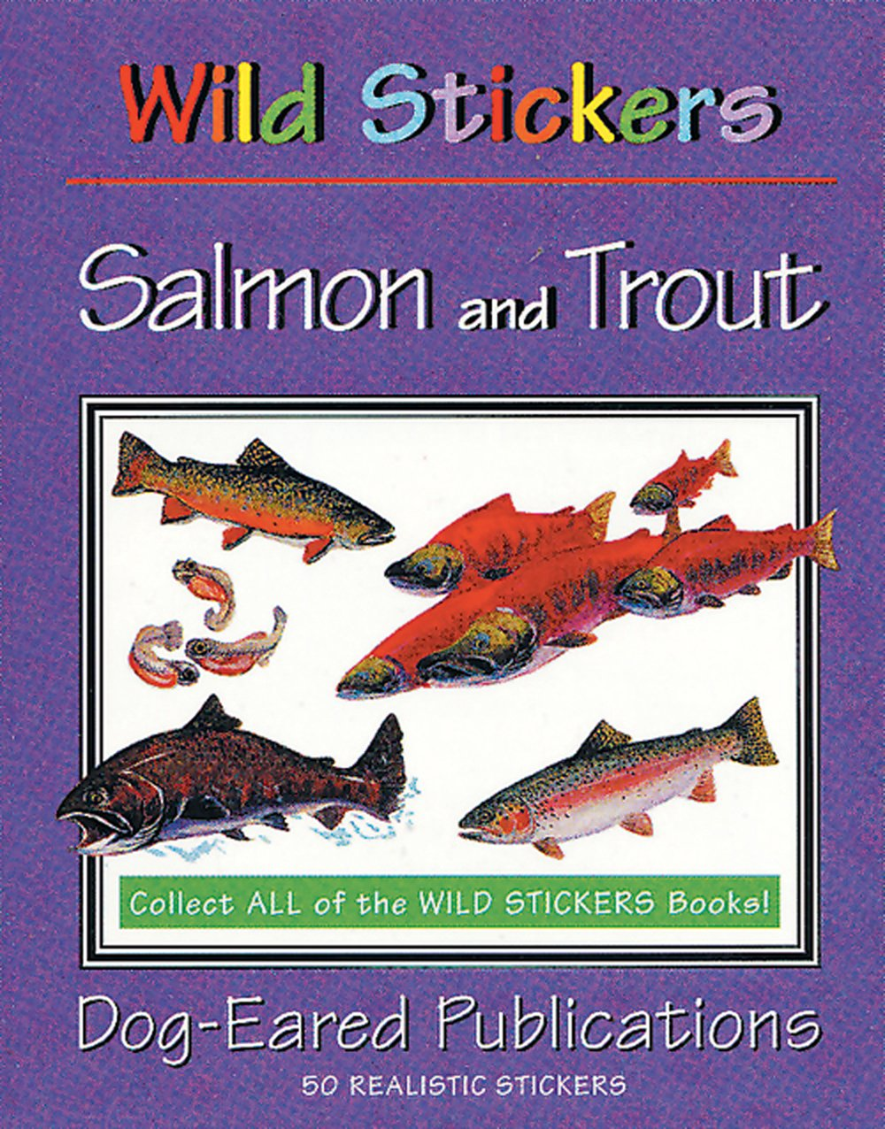 Salmon and Trout (Wild Stickers Series)