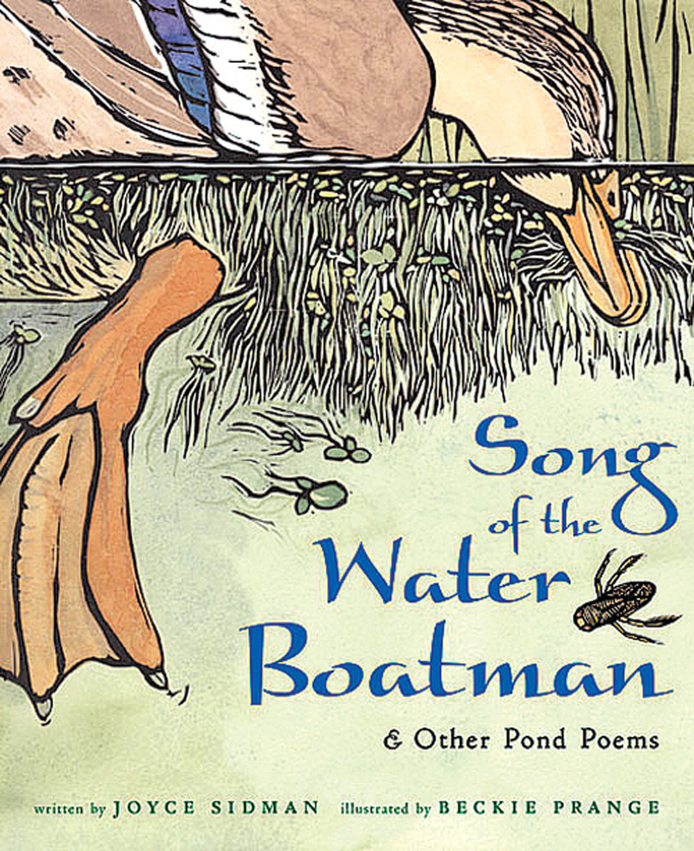Song of the Water Boatman