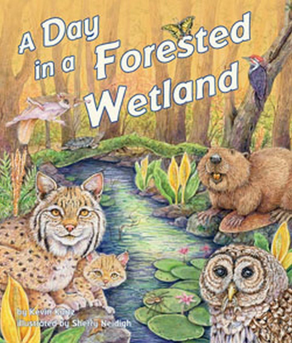 Day in a Forested Wetland (A)