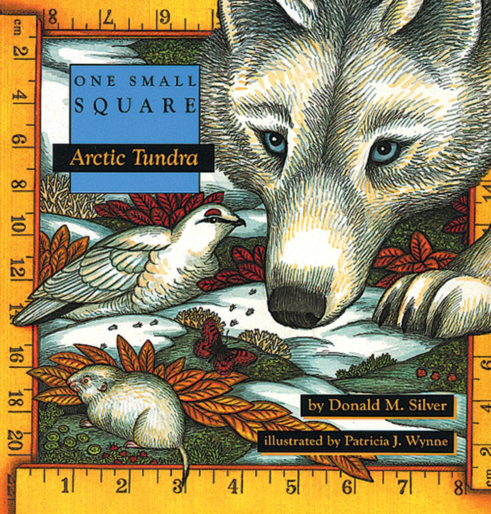 Arctic Tundra (One Small Square Series)
