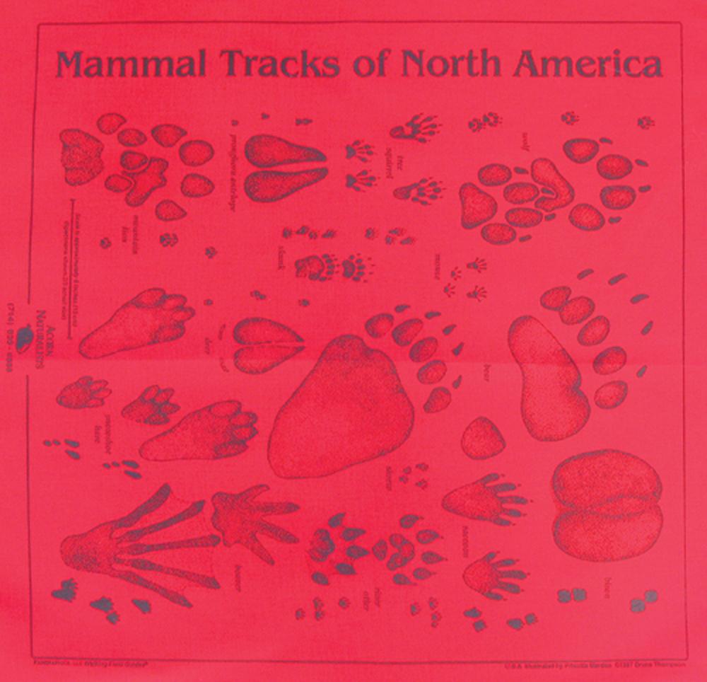 Red Track Scarf (Acorn Naturalists' Identification Bandana)