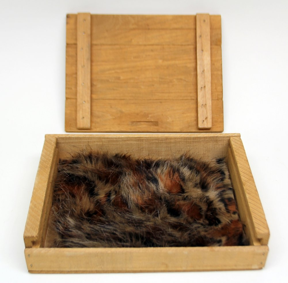 Cougar Cub Kind Fur® (Boxed)