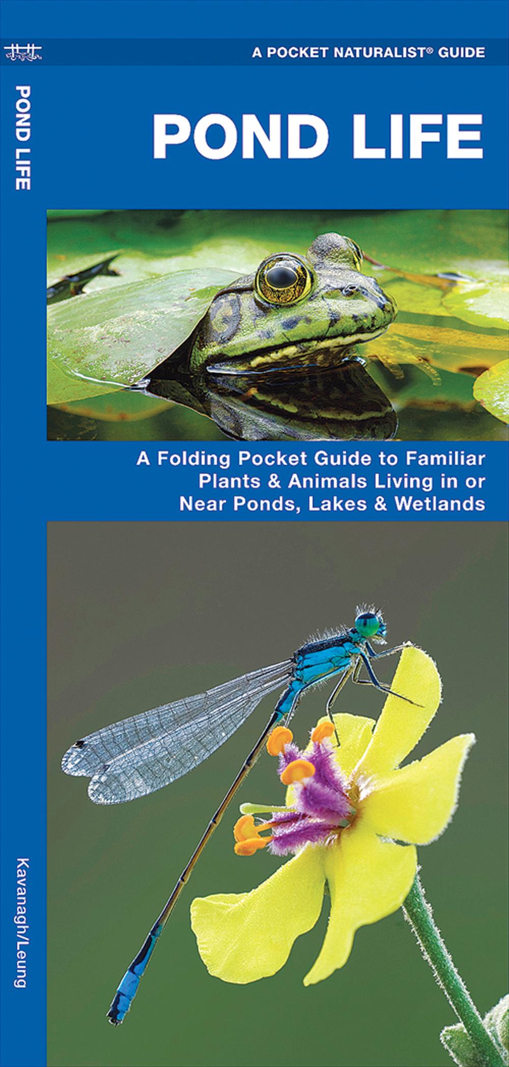 Pond Life (Pocket Naturalist® Guide)