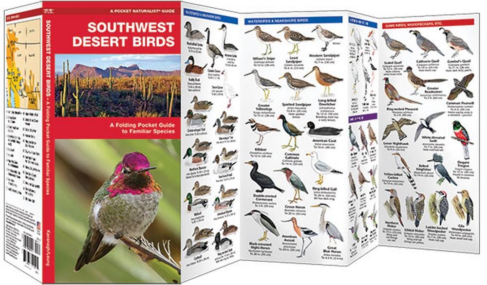 Southwest Desert Birds (Pocket Naturalist® Guide)