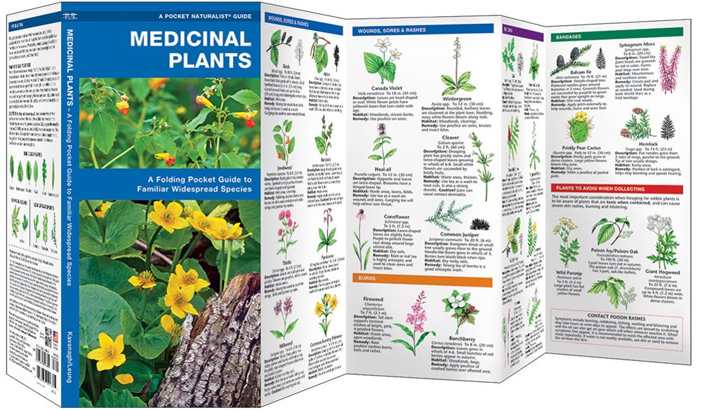 Medicinal Plants (Pocket Naturalist® Guide)