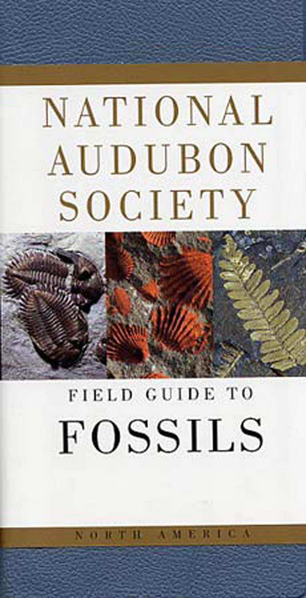 North America National Audubon Society Field Guide to Shells