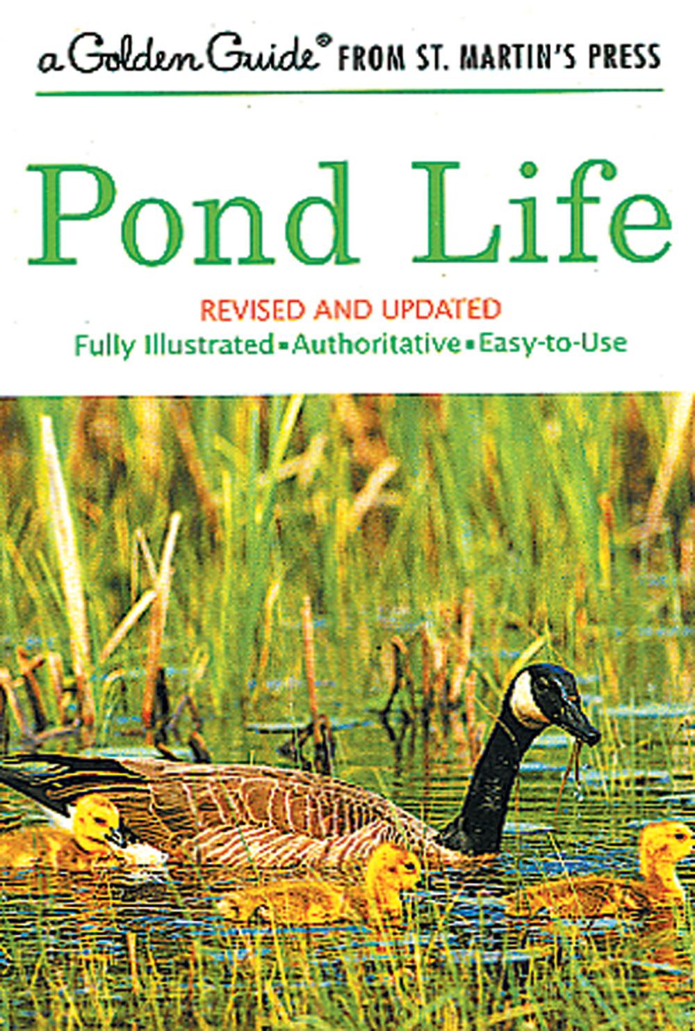 Pond Life (Golden Guide®)