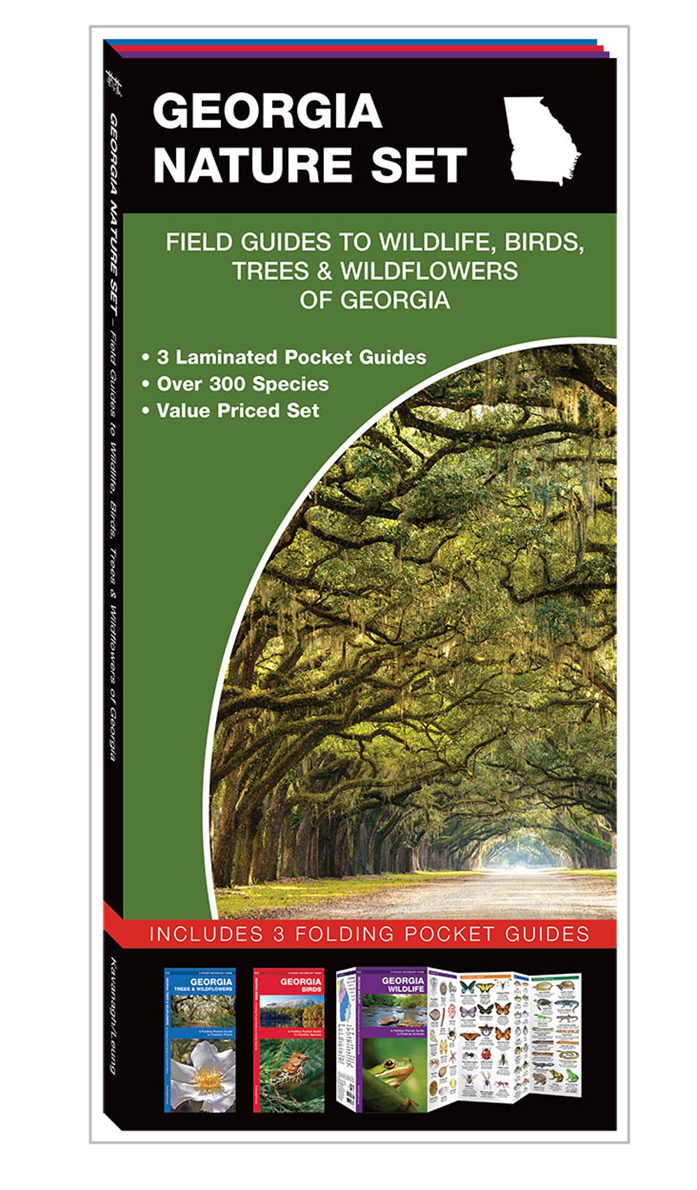 Georgia Nature Set: Field Guides to Wildlife, Birds, Trees & Wildflowers (Pocket Naturalist® Guide Set)