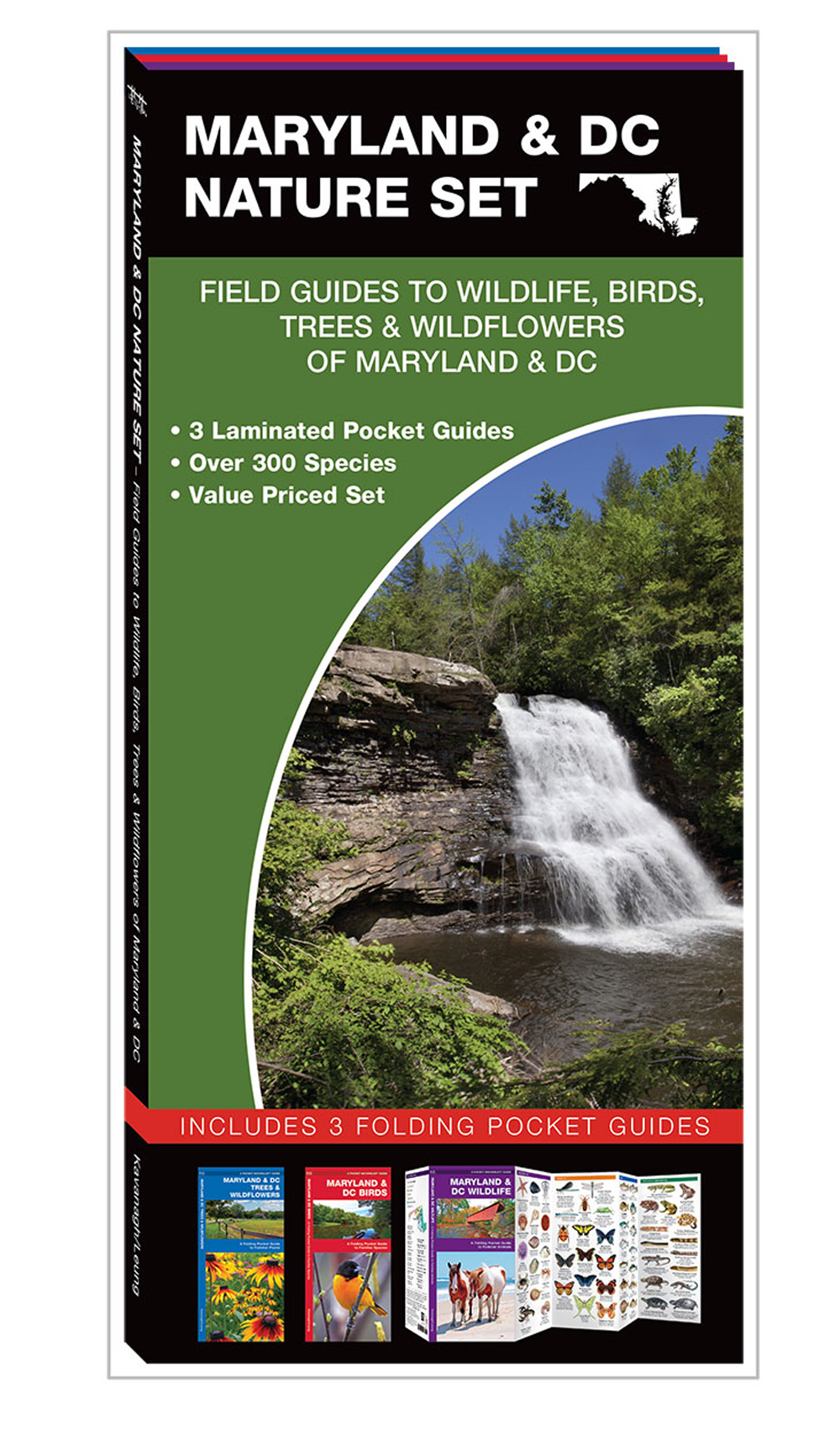 Maryland & DC Nature Set: Field Guides to Wildlife, Birds, Trees & Wildflowers (Pocket Naturalist® Guide Set)