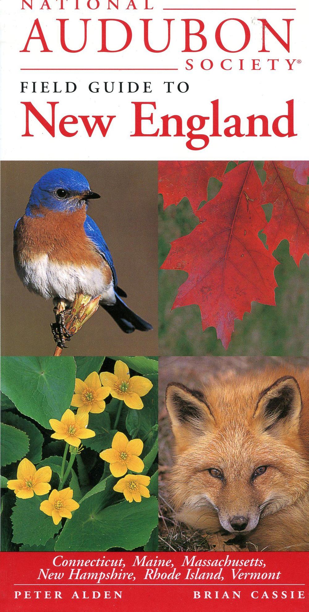 New England States (National Audubon Society® Regional Field Guide)