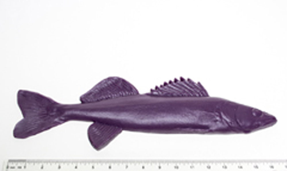 Walleye Fish Printing Replica