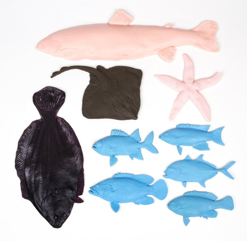 Saltwater Fish Printing Replica Collection (Discounted Set of 9 Fish Replicas)