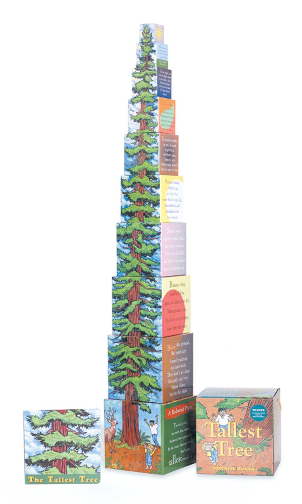 Tallest Trees Stacking Blocks
