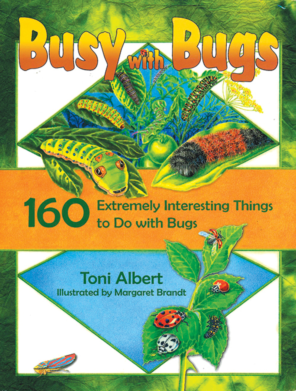 Busy With Bugs: 160 Extremely Interesting Things To Do With Bugs
