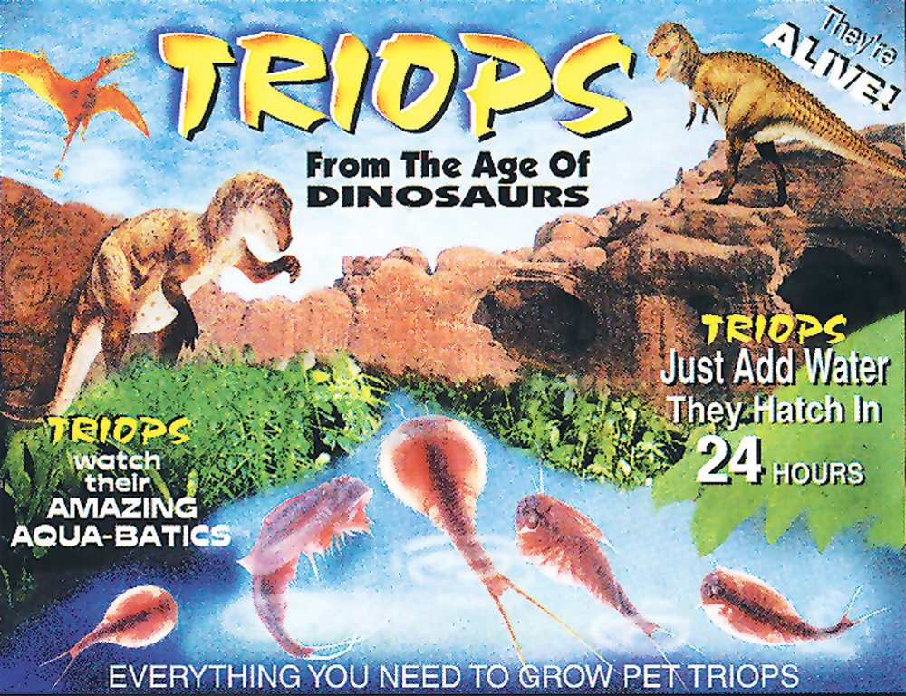 Triops Packet (Eggs, Conditioner, Food, and Instructions)