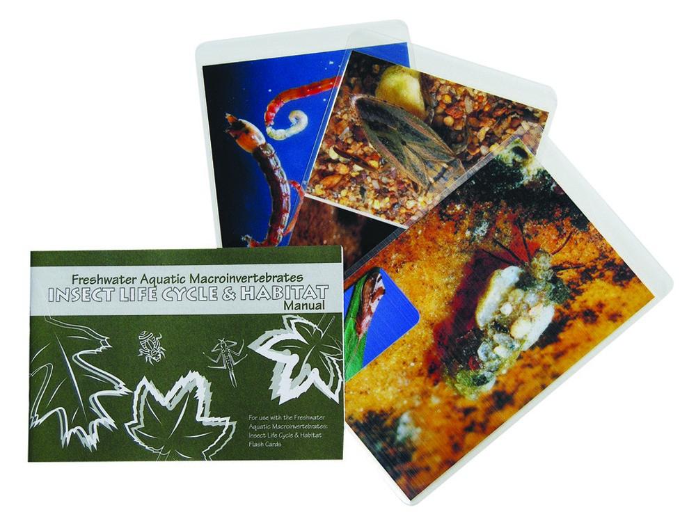 Aquatic Macroinvertebrate Life Cycle and Habitat Cards