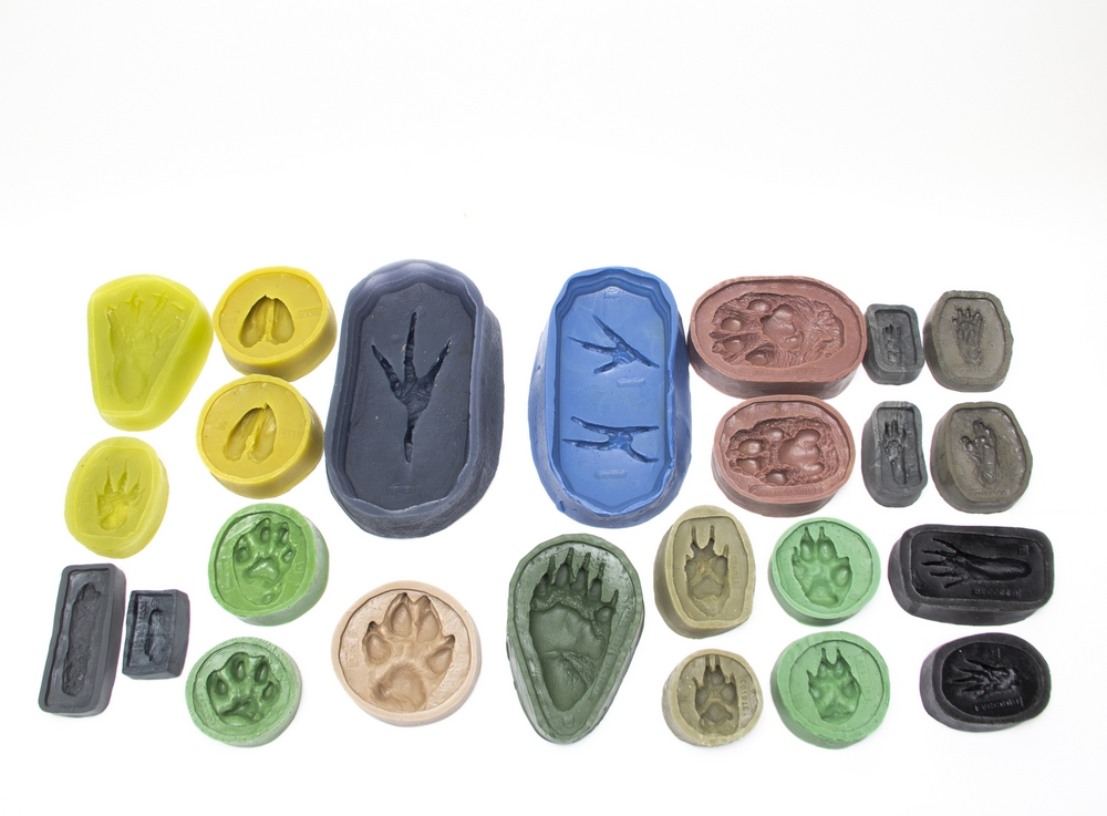 "Track Mold ""Bestsellers"" Collection (Discounted Set of 14 Molds)"
