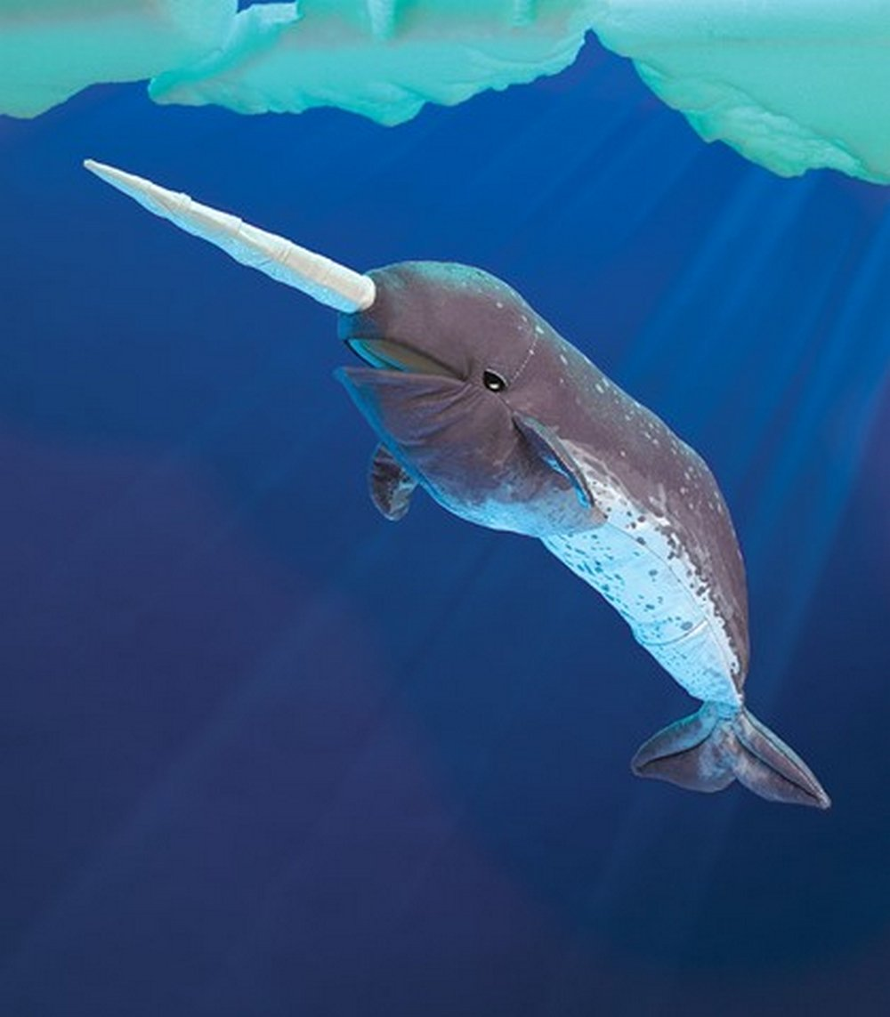Narwhal Puppet