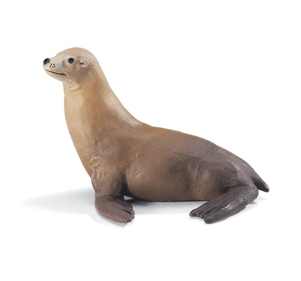 Sea Lion (Basking) Model