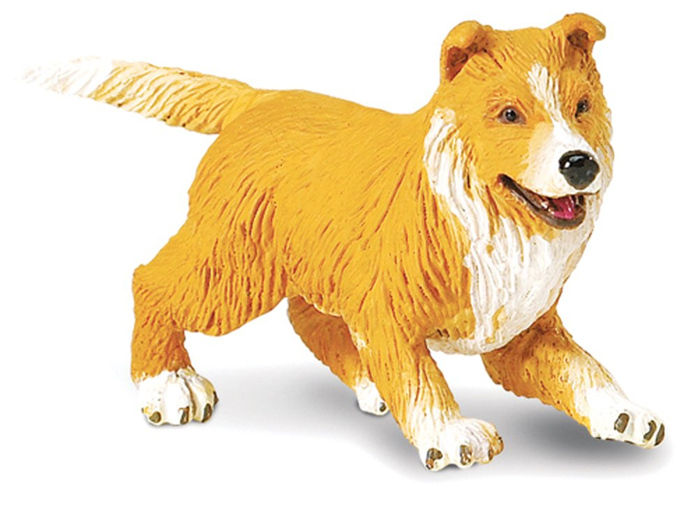 Puppy (Collie) Model