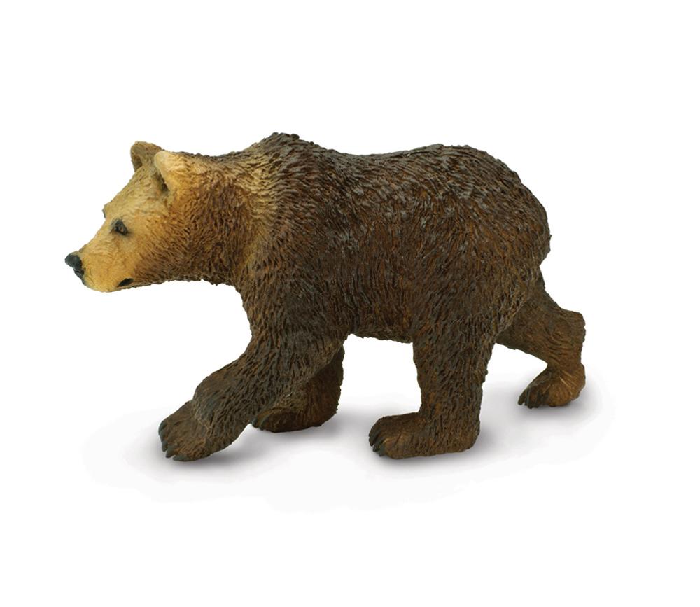 Bear Cub (Grizzly) Model