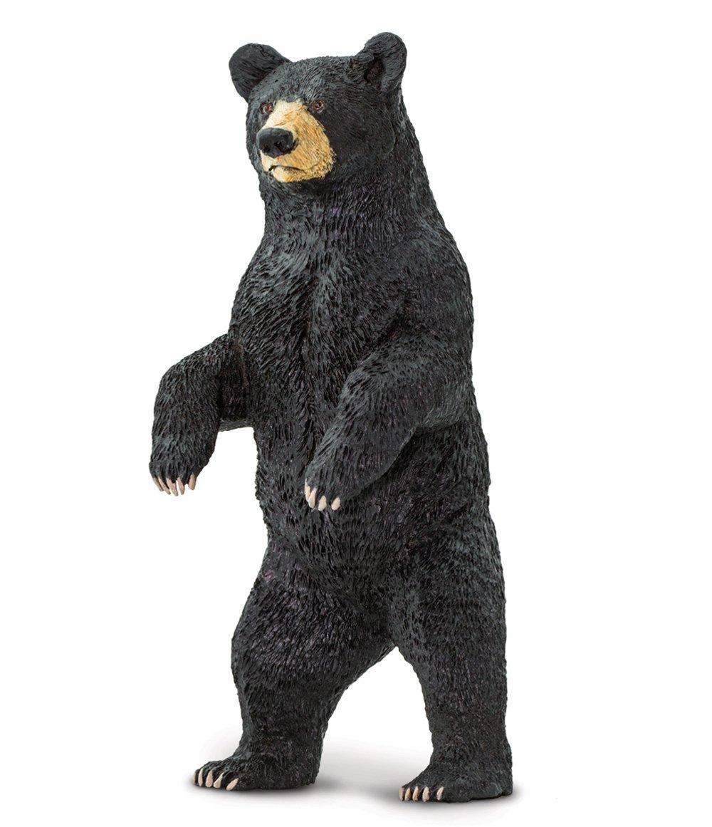 Bear (Black, Standing) Model