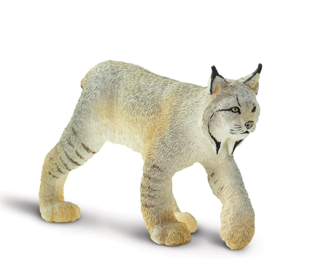 Lynx Model