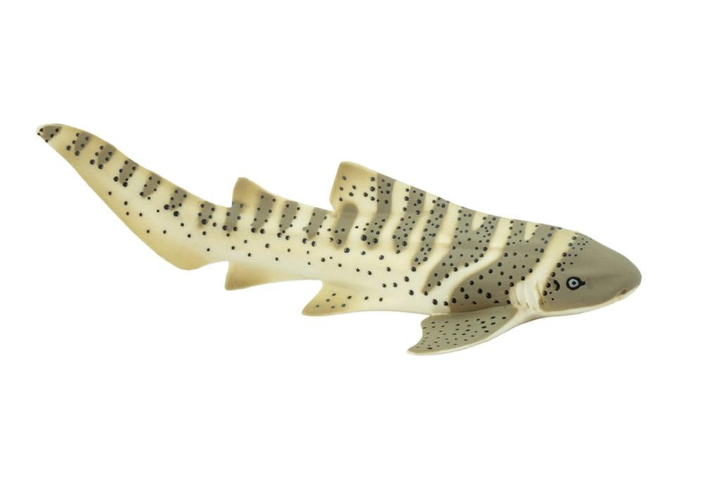 Shark (Zebra) Model