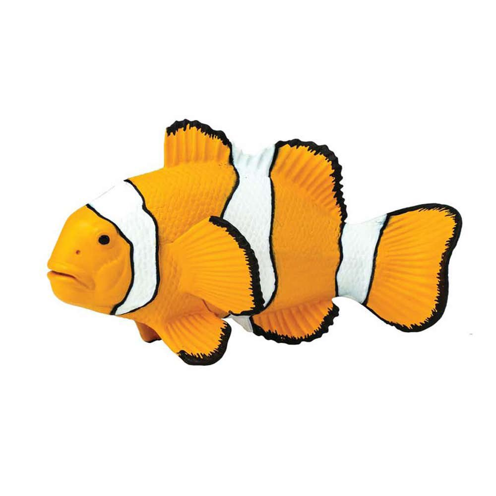 Clown Anemone Fish Model