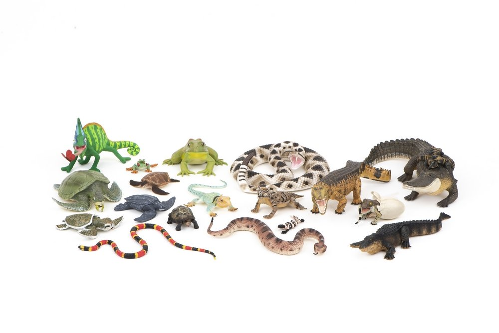 Reptiles & Amphibians Model Collection (Discounted Set of 18 Models)