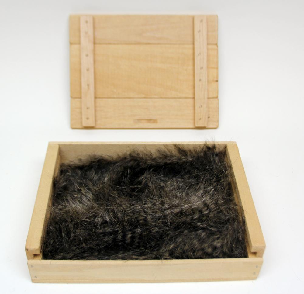 Raccoon Kind Fur® (Boxed)
