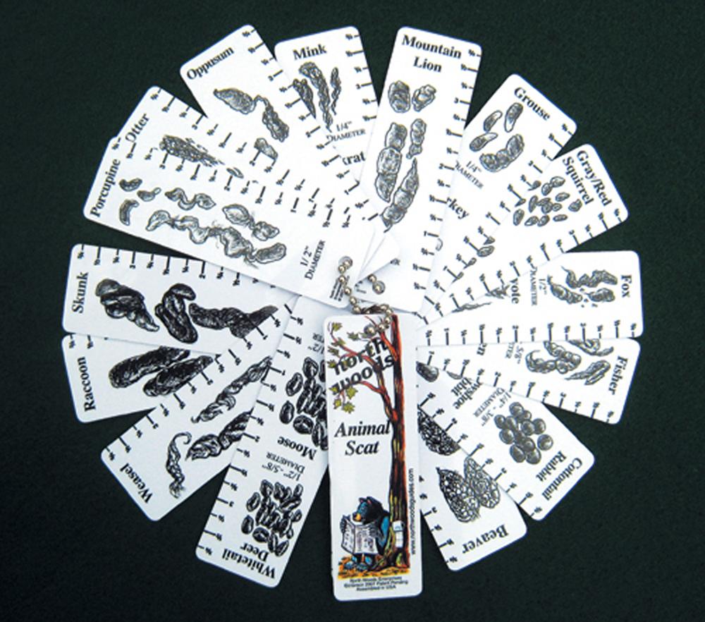 Animal Scat Keychain Identification Guide