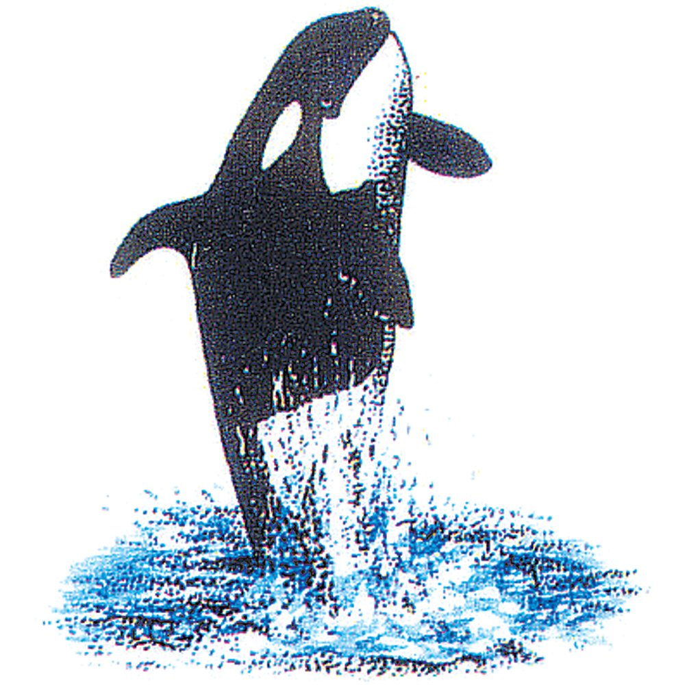 Orca Rubber Stamp