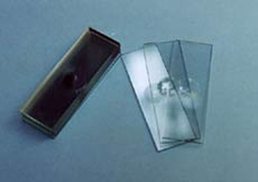"""Microscope """"Well"""" Slides, Glass (Pack of 12)"""