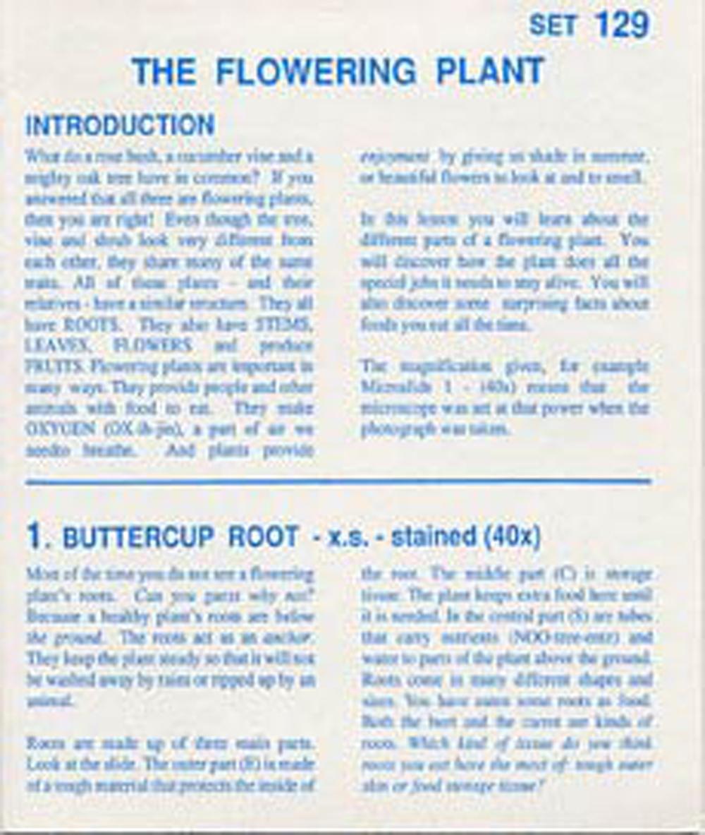 American Educational Microslide Green Plants Lesson Plan Set Box of 10