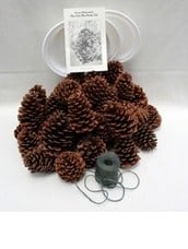 Pine Cone Bird Feeder Kit