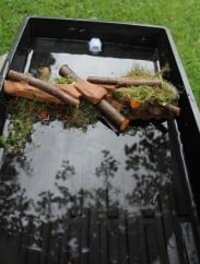 STEM ACTIVITIES: Build A Beaver Dam Kit®